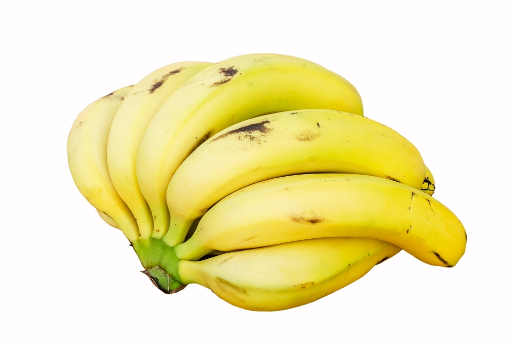 Bananas white background