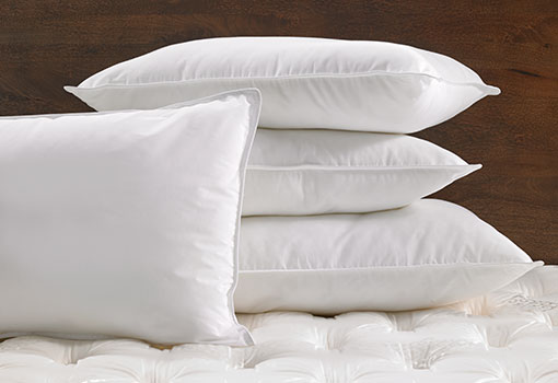 hilton-feather-down-hilton-pillow-hil-108-f_lrg